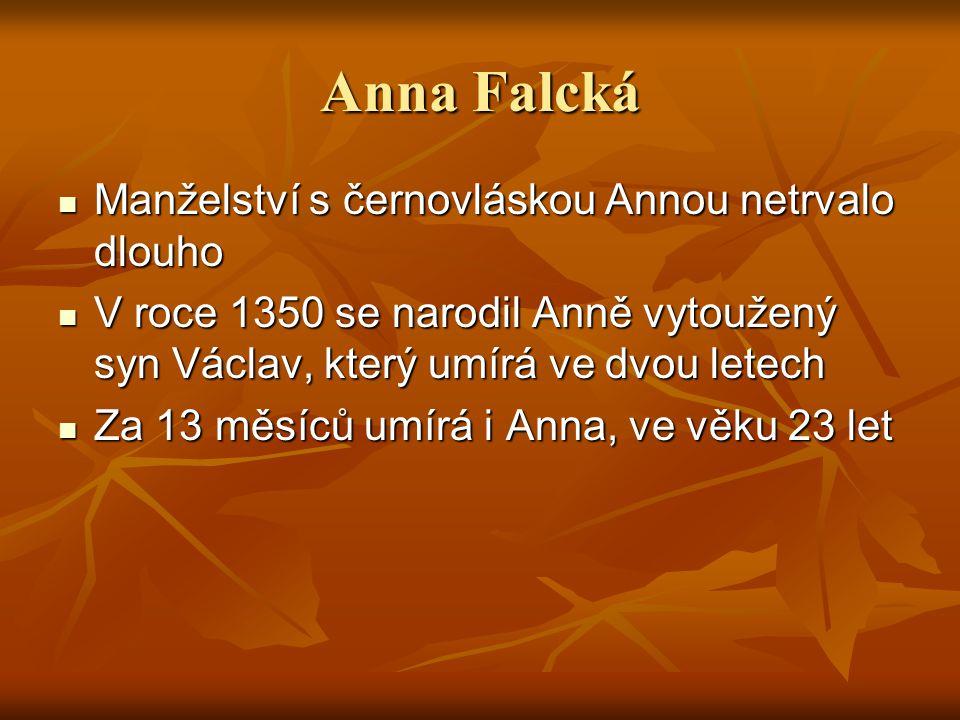 Anna Falcká Manželství s černovláskou Annou netrvalo dlouho Manželství s černovláskou Annou netrvalo dlouho V roce 1350 se narodil Anně vytoužený syn