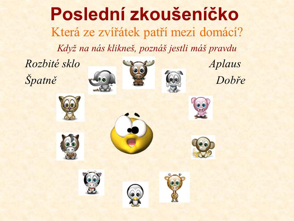 Zkuste se naučit krásné básničky Můžete uspořádat soutěž v recitaci František Hrubín Pilná kvočna Nesu vajec plnou nůši, podívej se, jak mi sluší, vrá