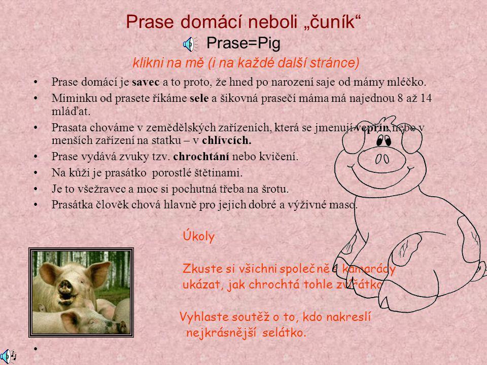Poznej domácí zvířata Naučíme se: -Jaká zvířátka žijí na českém dvorku -Čím se živí -K čemu jsou nám užitečná -Jaké zvuky vydávají -Jak se jmenují jej