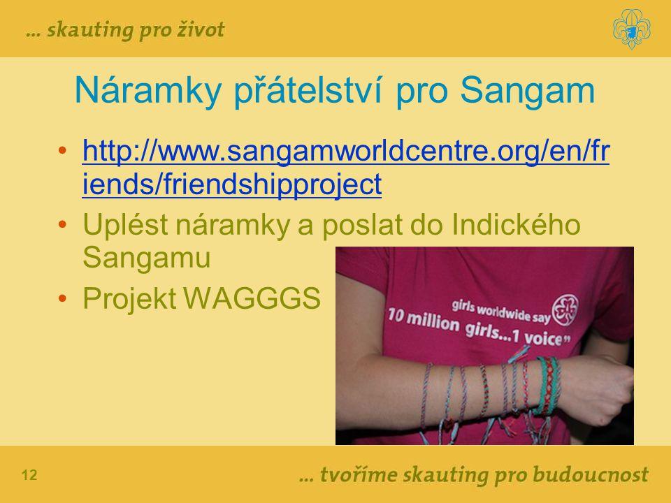 12 Náramky přátelství pro Sangam http://www.sangamworldcentre.org/en/fr iends/friendshipprojecthttp://www.sangamworldcentre.org/en/fr iends/friendship