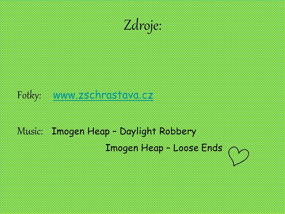 Zdroje: Fotky: www.zschrastava.cz www.zschrastava.cz Music: Imogen Heap – Daylight Robbery Imogen Heap – Loose Ends