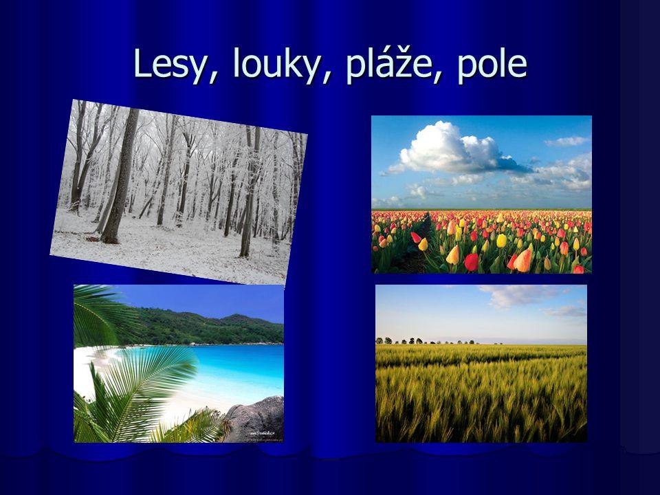 Lesy, louky, pláže, pole
