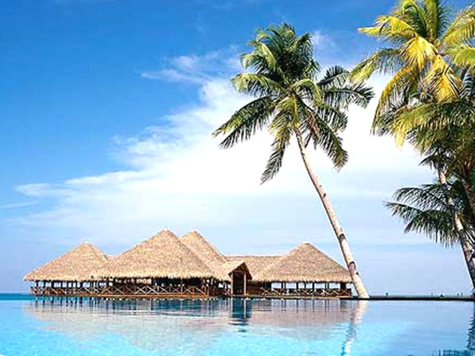 Slovníček - Maledivským dorozumívajícím jazykem je dhivehi Ahoj-A salam alekum,kihine Sbohem-Vale kumu salam Jak se máte?-Haalu kihine.