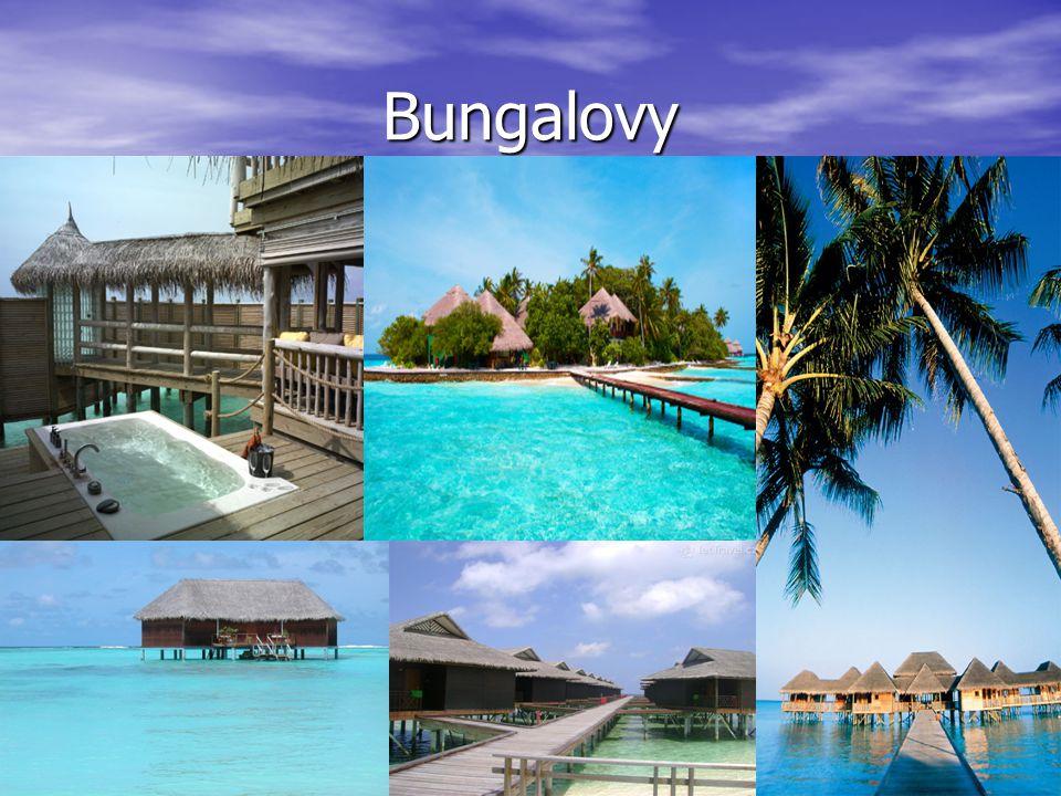 Nejoblíbenější ostrovy Ostrov Cocoa-patří k nejkrásnějším místům,nacházejících se v maledivském souostroví,jenž většině turistů připomíná ostrov,na kterém žil Robinson Crusoe.