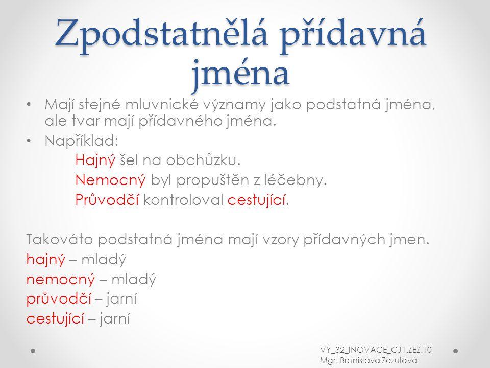 Zpodstatnělá přídavná jména Mají stejné mluvnické významy jako podstatná jména, ale tvar mají přídavného jména. Například: Hajný šel na obchůzku. Nemo