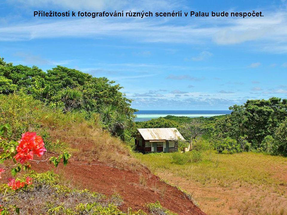 Příležitostí k fotografování různých scenérií v Palau bude nespočet.