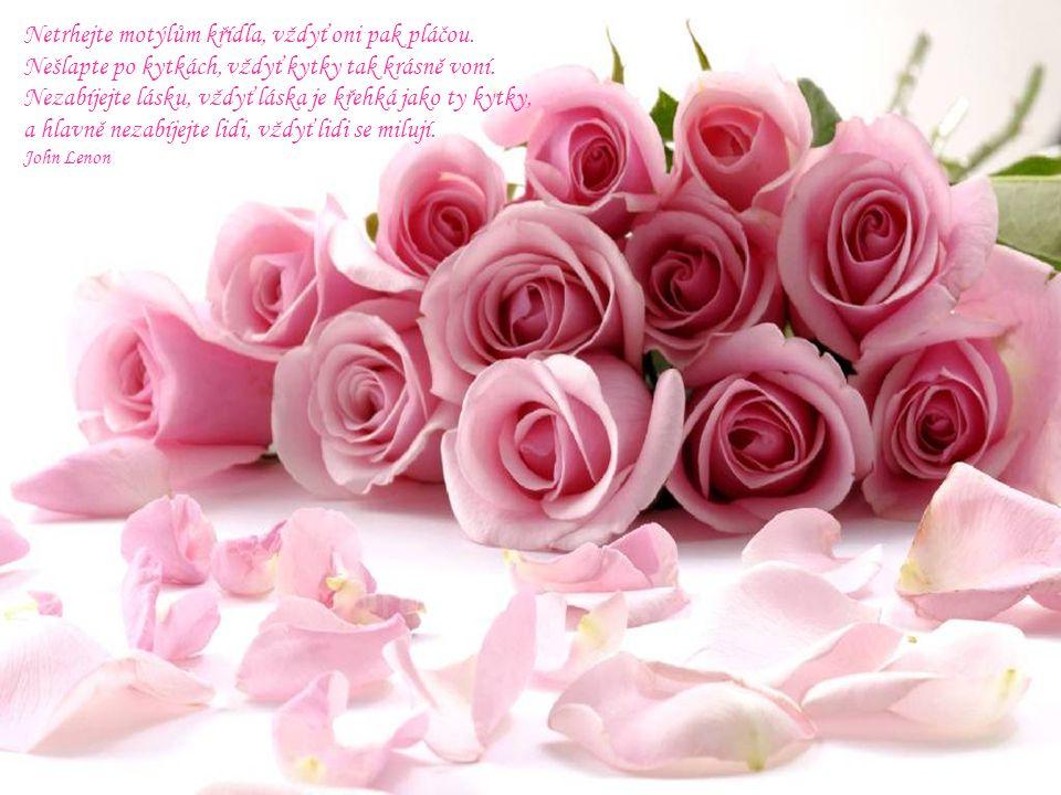 Dobré jsou růže, trny jsou zlé, zahradou života každý z nás jde.