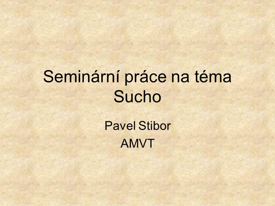 Seminární práce na téma Sucho Pavel Stibor AMVT