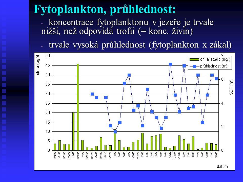 Fytoplankton, průhlednost: - koncentrace fytoplanktonu v jezeře je trvale nižší, než odpovídá trofii (= konc.