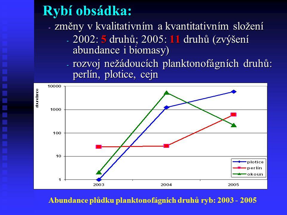 Rybí obsádka: - změny v kvalitativním a kvantitativním složení - 2002: 5 druhů; 2005: 11 druhů (zvýšení abundance i biomasy) - rozvoj nežádoucích planktonofágních druhů: perlín, plotice, cejn Abundance plůdku planktonofágních druhů ryb: 2003 - 2005