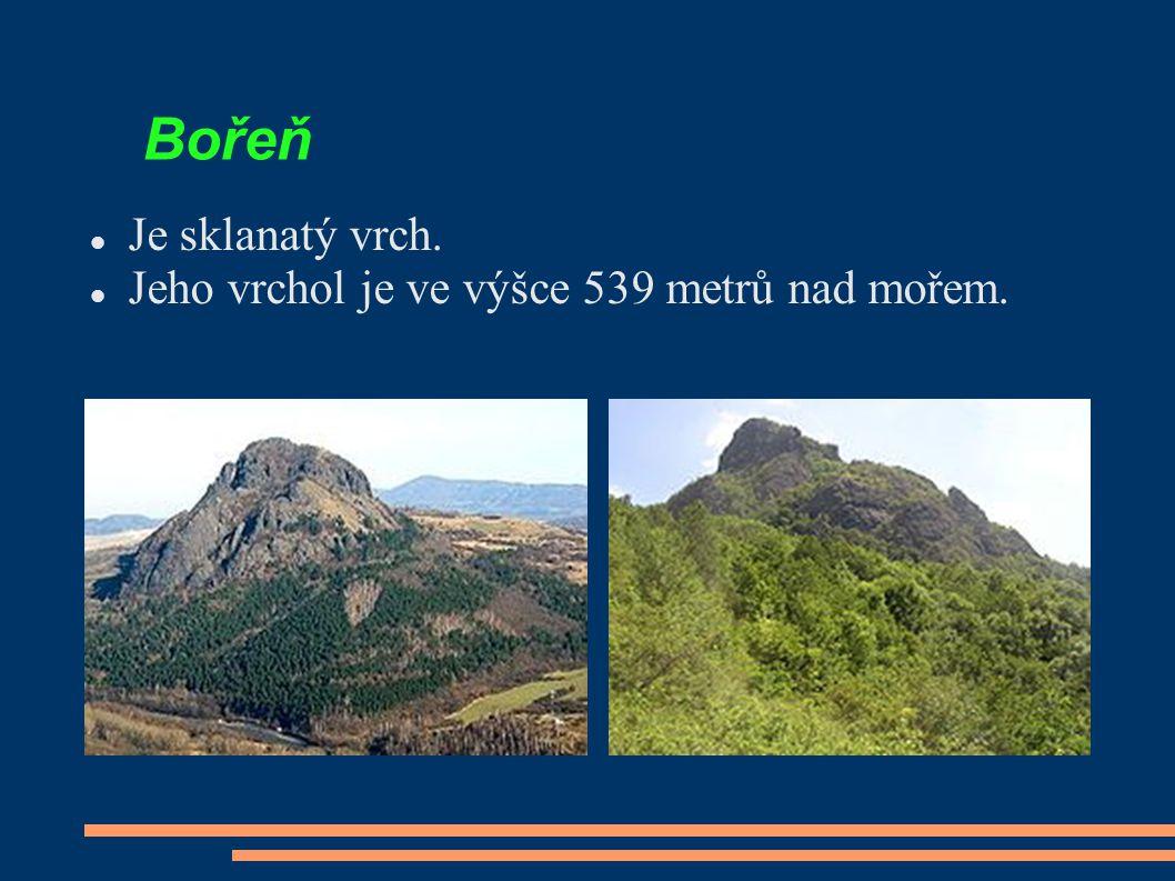 Bořeň Je sklanatý vrch. Jeho vrchol je ve výšce 539 metrů nad mořem.