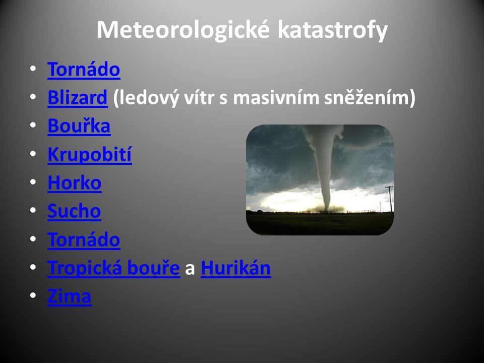 Meteorologické katastrofy Tornádo Blizard (ledový vítr s masivním sněžením) Blizard Bouřka Krupobití Horko Sucho Tornádo Tropická bouře a Hurikán Trop