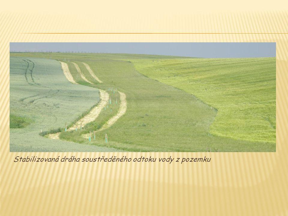 Stabilizovaná dráha soustředěného odtoku vody z pozemku