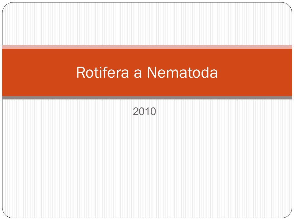 2010 Rotifera a Nematoda