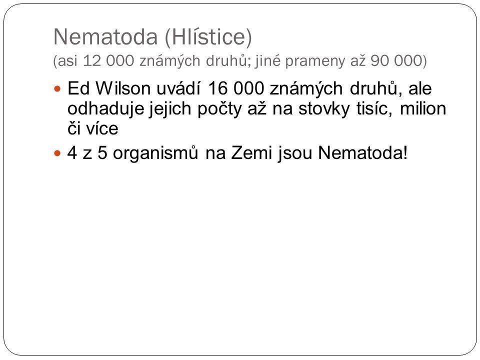 Nematoda (Hlístice) (asi 12 000 známých druhů; jiné prameny až 90 000) Ed Wilson uvádí 16 000 známých druhů, ale odhaduje jejich počty až na stovky tisíc, milion či více 4 z 5 organismů na Zemi jsou Nematoda!
