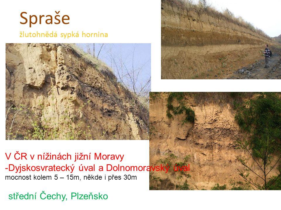 Spraše žlutohnědá sypká hornina V ČR v nížinách jižní Moravy -Dyjskosvratecký úval a Dolnomoravský úval mocnost kolem 5 – 15m, někde i přes 30m středn