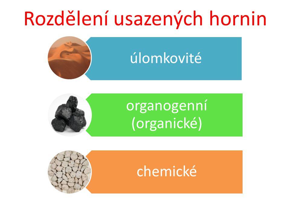 Rozdělení usazených hornin úlomkovité organogenní (organické) chemické