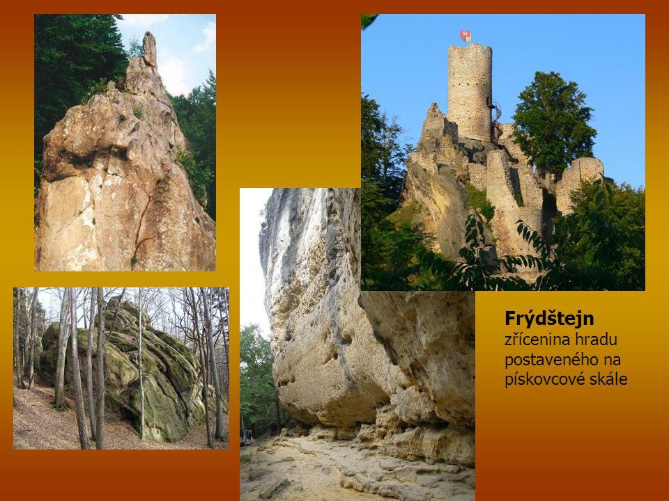 Frýdštejn zřícenina hradu postaveného na pískovcové skále