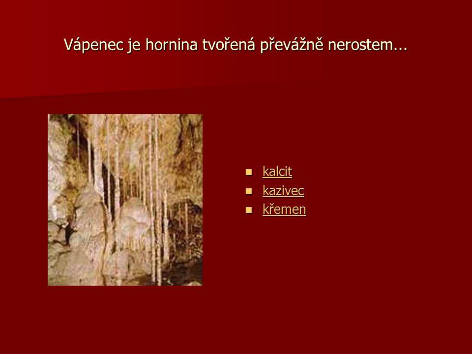 Vápenec je hornina tvořená převážně nerostem...