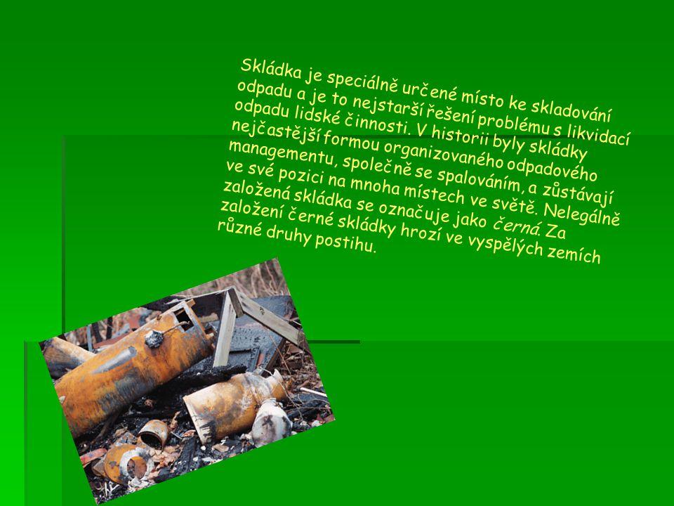 Skládka je speciálně určené místo ke skladování odpadu a je to nejstarší řešení problému s likvidací odpadu lidské činnosti. V historii byly skládky n