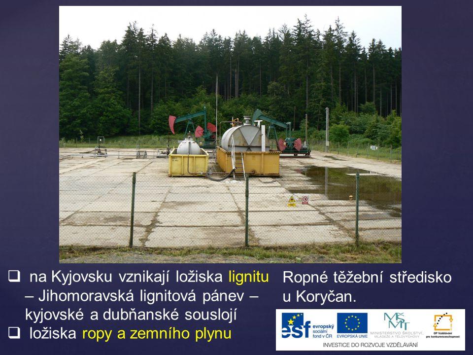  na Kyjovsku vznikají ložiska lignitu – Jihomoravská lignitová pánev – kyjovské a dubňanské souslojí  ložiska ropy a zemního plynu Ropné těžební stř