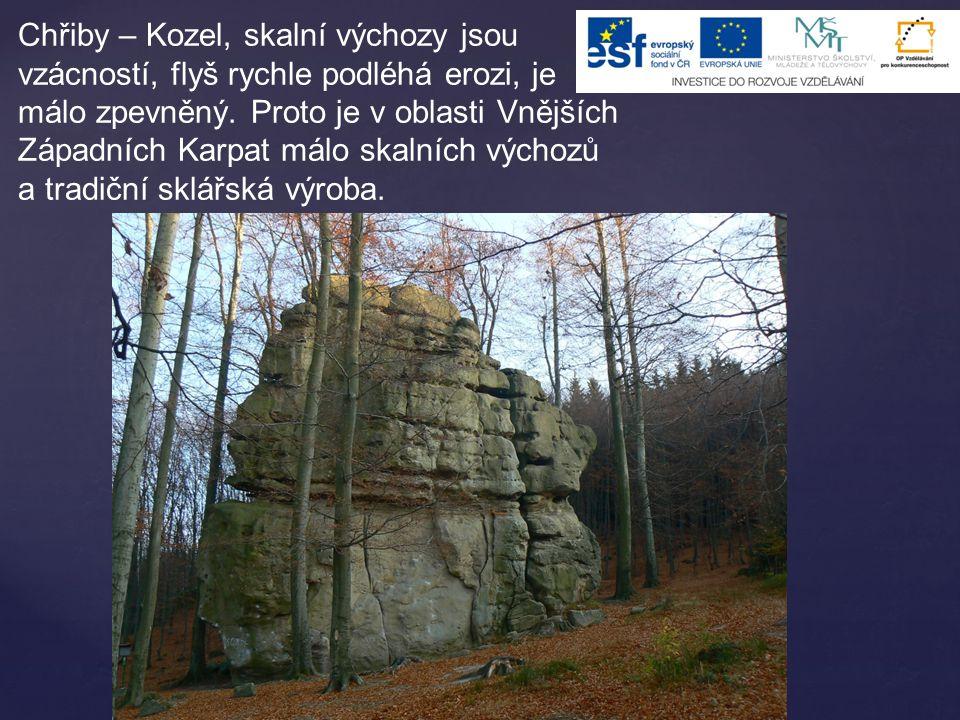 Chřiby – Kozel, skalní výchozy jsou vzácností, flyš rychle podléhá erozi, je málo zpevněný. Proto je v oblasti Vnějších Západních Karpat málo skalních
