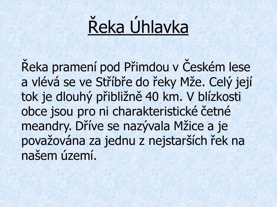 Řeka Úhlavka Řeka pramení pod Přimdou v Českém lese a vlévá se ve Stříbře do řeky Mže. Celý její tok je dlouhý přibližně 40 km. V blízkosti obce jsou