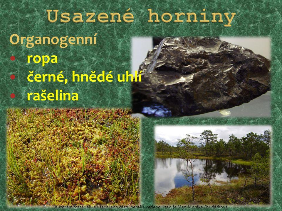 Organogenní ropa černé, hnědé uhlí rašelina Autorem materiálu a všech jeho částí, není-li uvedeno jinak, je Mgr. Monika Chudárková