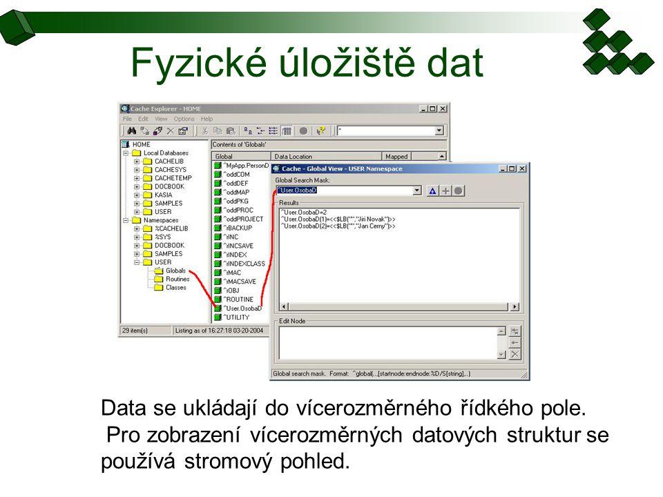 Fyzické úložiště dat Data se ukládají do vícerozměrného řídkého pole. Pro zobrazení vícerozměrných datových struktur se používá stromový pohled.