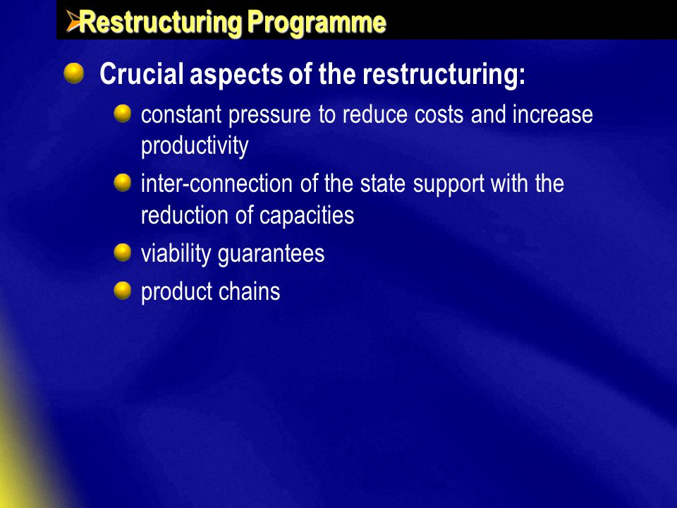  Restructuring Programme Crucial aspects of the restructuring: constant pressure to reduce costs and increase productivity inter-connection of the state support with the reduction of capacities viability guarantees product chains