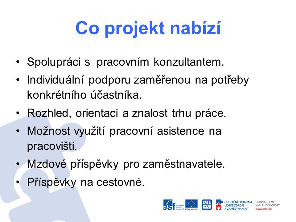 Co projekt nabízí Spolupráci s pracovním konzultantem. Individuální podporu zaměřenou na potřeby konkrétního účastníka. Rozhled, orientaci a znalost t
