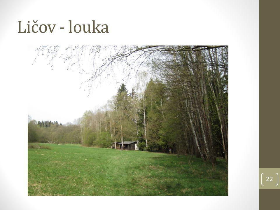 Ličov - louka 22