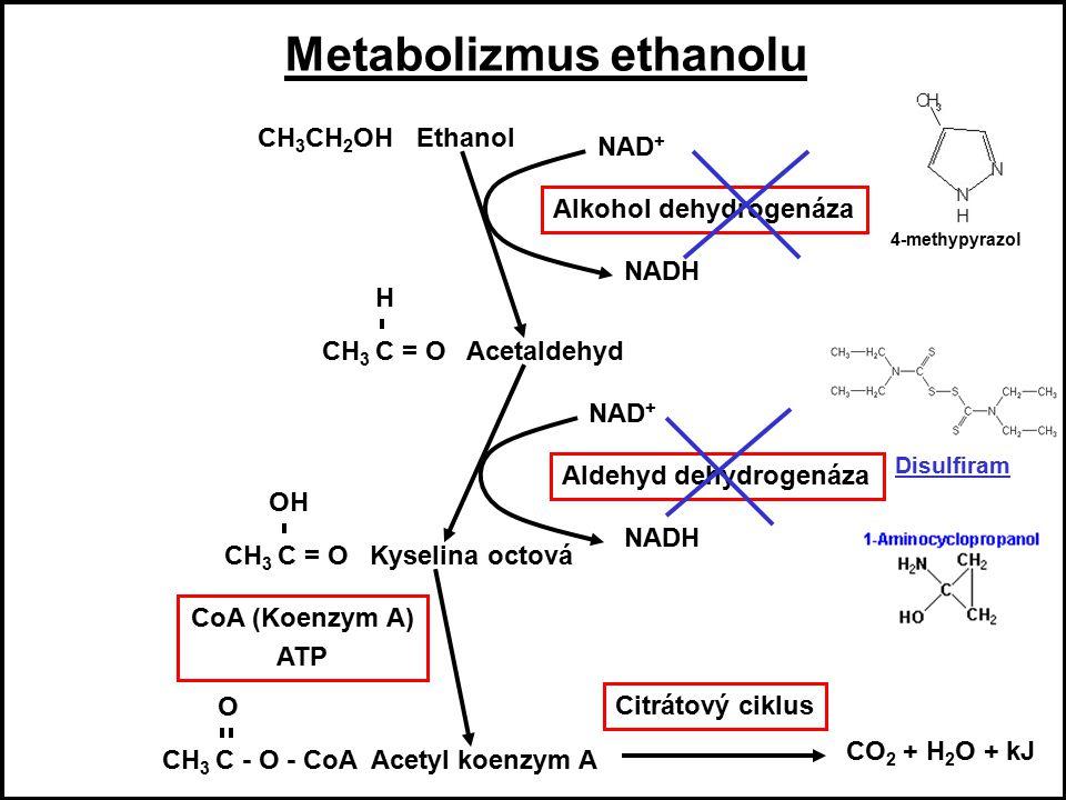 10 Další jedovaté houby Hnojník nebo Hník inkoustový (Coprinus atramentarius) toxická látka - koprin biotranformace na 1-aminocyklopropanol inhibice enzymu aldehyd dehydrogenázy účinky koprinu 48h po požití houby symptomy 10 min po požití alkoholu toxický účinek acetaldehydu Symptomy: kovová příchuť v ústech, zarudnutí v obličeji, třes, zvracení a průjmy Antidotum: 4 - methylpyrazol - blokuje alkohol dehydrogenázu L- glutamin Metabolizmus ethanolu CH 3 CH 2 OH Ethanol NAD + NADH Alkohol dehydrogenáza CH 3 C = O Acetaldehyd H NAD + NADH Aldehyd dehydrogenáza CH 3 C = O Kyselina octová OH CoA (Koenzym A) ATP CH 3 C - O - CoA Acetyl koenzym A O Citrátový ciklus CO 2 + H 2 O + kJ Metabolizmus ethanolu CH 3 CH 2 OH Ethanol NAD + NADH Alkohol dehydrogenáza CH 3 C = O Acetaldehyd H NAD + NADH Aldehyd dehydrogenáza CH 3 C = O Kyselina octová OH CoA (Koenzym A) ATP CH 3 C - O - CoA Acetyl koenzym A O Citrátový ciklus CO 2 + H 2 O + kJ Metabolizmus ethanolu CH 3 CH 2 OH Ethanol NAD + NADH Alkohol dehydrogenáza CH 3 C = O Acetaldehyd H NAD + NADH Aldehyd dehydrogenáza CH 3 C = O Kyselina octová OH CoA (Koenzym A) ATP CH 3 C - O - CoA Acetyl koenzym A O Citrátový ciklus CO 2 + H 2 O + kJ Disulfiram 4-methypyrazol