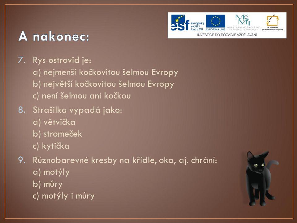 7.Rys ostrovid je: a) nejmenší kočkovitou šelmou Evropy b) největší kočkovitou šelmou Evropy c) není šelmou ani kočkou 8.Strašilka vypadá jako: a) vět