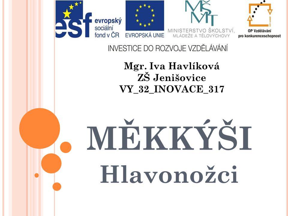 MĚKKÝŠI Hlavonožci Mgr. Iva Havlíková ZŠ Jenišovice VY_32_INOVACE_317