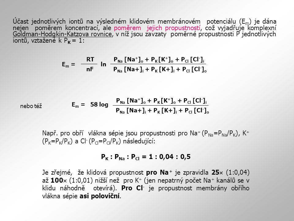 Např. pro obří vlákna sépie jsou propustnosti pro Na + (P Na =P Na /P K ), K + (P K =P K /P K ) a Cl - (P Cl =P Cl /P K ) následující: P K : P Na : P
