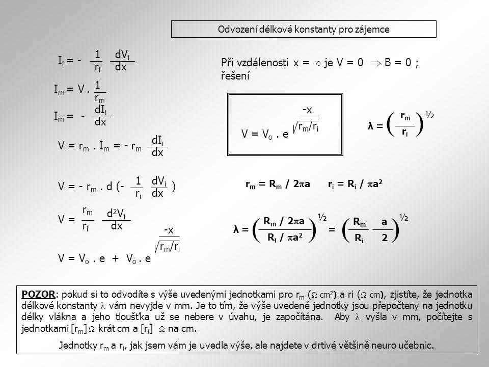 Odvození délkové konstanty pro zájemce I i = - 1 riri dV i dx I m = V. 1 rmrm dx dI i V = r m. I m = - r m dx I m = - dI i V = - r m. d (- ) dx 1 riri