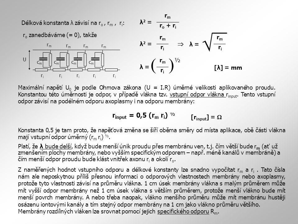 Platí, že λ bude delší, když bude menší únik proudu přes membránu ven, t.j. čím větší bude r m (ať už zmenšením plochy membrány, nebo vyšším specifick