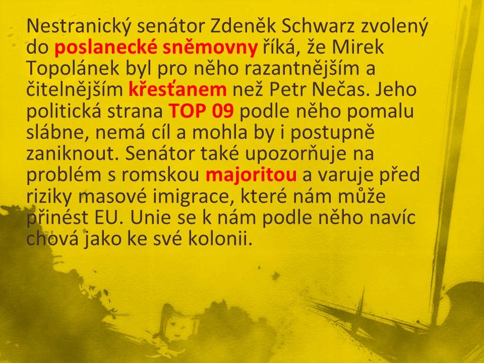 Senátu politikem ODS minoritou