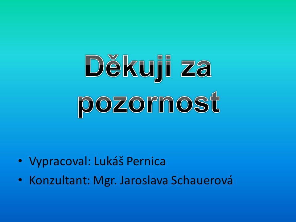 Vypracoval: Lukáš Pernica Konzultant: Mgr. Jaroslava Schauerová