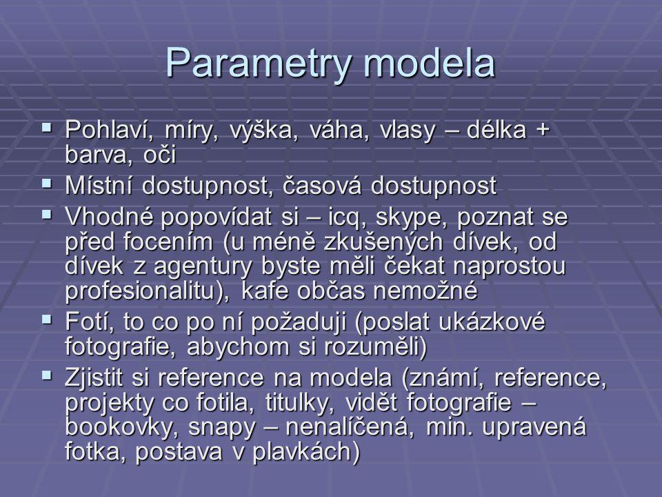 Parametry modela  Pohlaví, míry, výška, váha, vlasy – délka + barva, oči  Místní dostupnost, časová dostupnost  Vhodné popovídat si – icq, skype, p