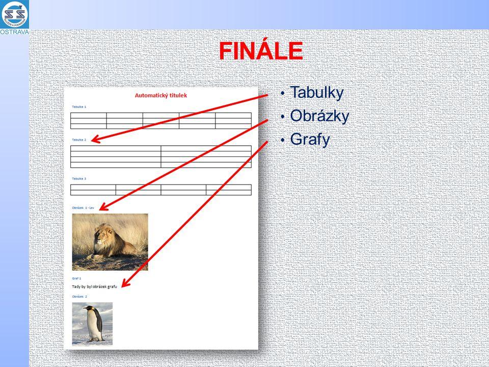 FINÁLE Tabulky Obrázky Grafy