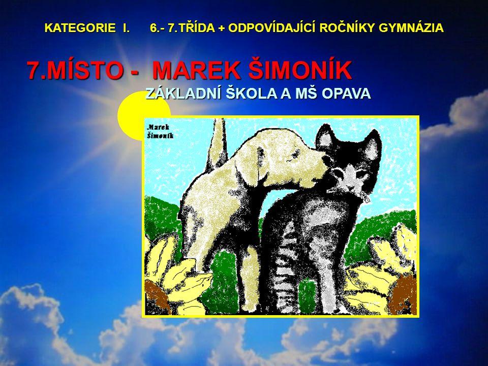 7.MÍSTO - MAREK ŠIMONÍK ZÁKLADNÍ ŠKOLA A MŠ OPAVA KATEGORIE I.
