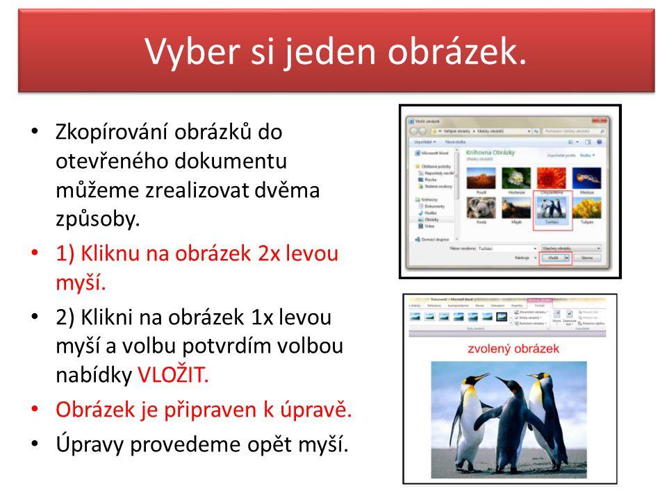 Vyber si jeden obrázek. Zkopírování obrázků do otevřeného dokumentu můžeme zrealizovat dvěma způsoby. 1) Kliknu na obrázek 2x levou myší. 2) Klikni na