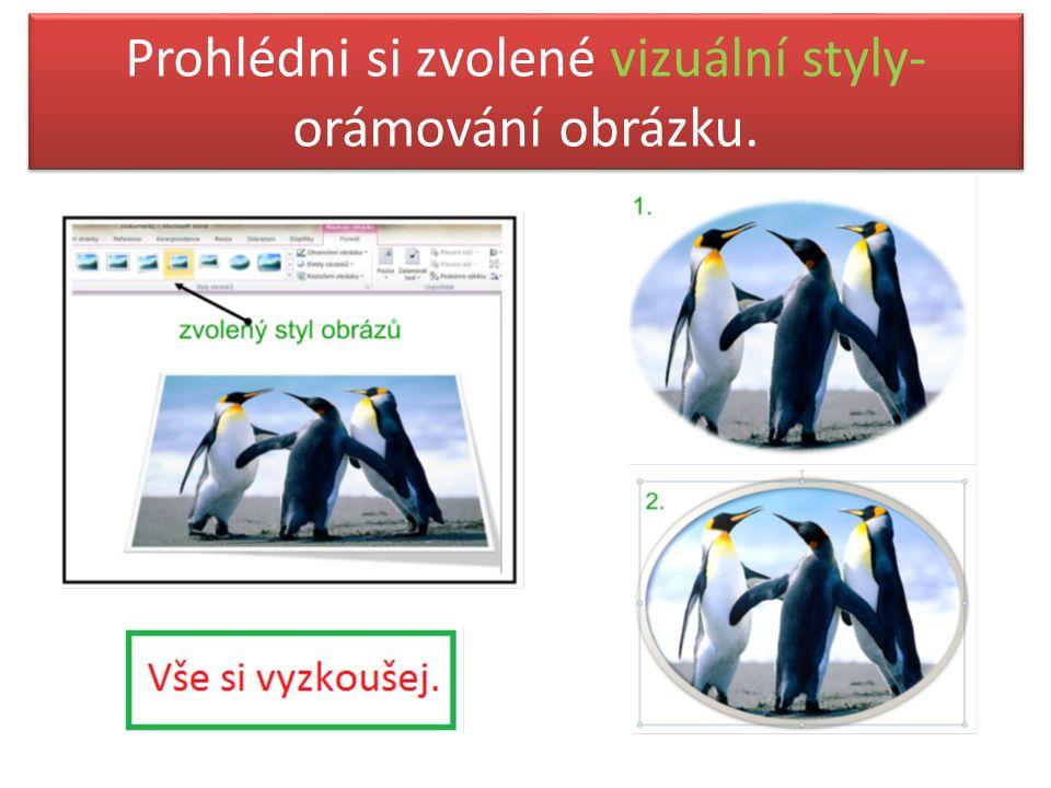 Prohlédni si zvolené vizuální styly- orámování obrázku.