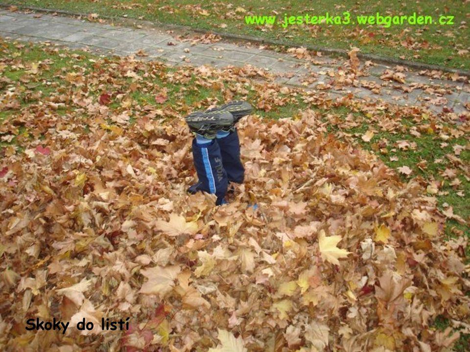 Skoky do listí