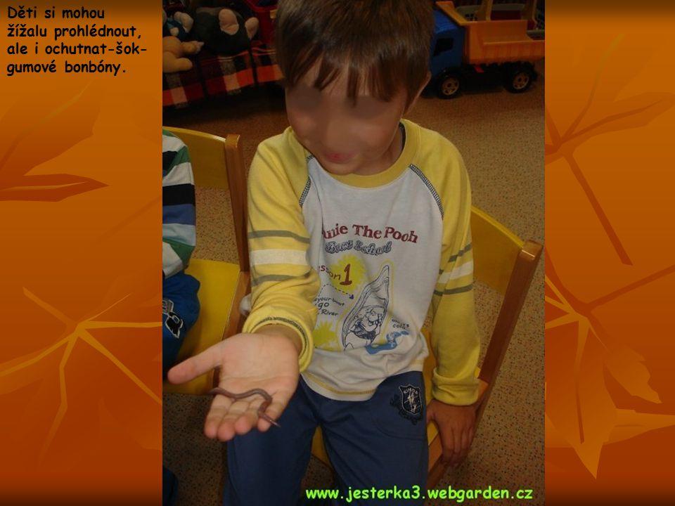 Děti si mohou žížalu prohlédnout, ale i ochutnat-šok- gumové bonbóny.
