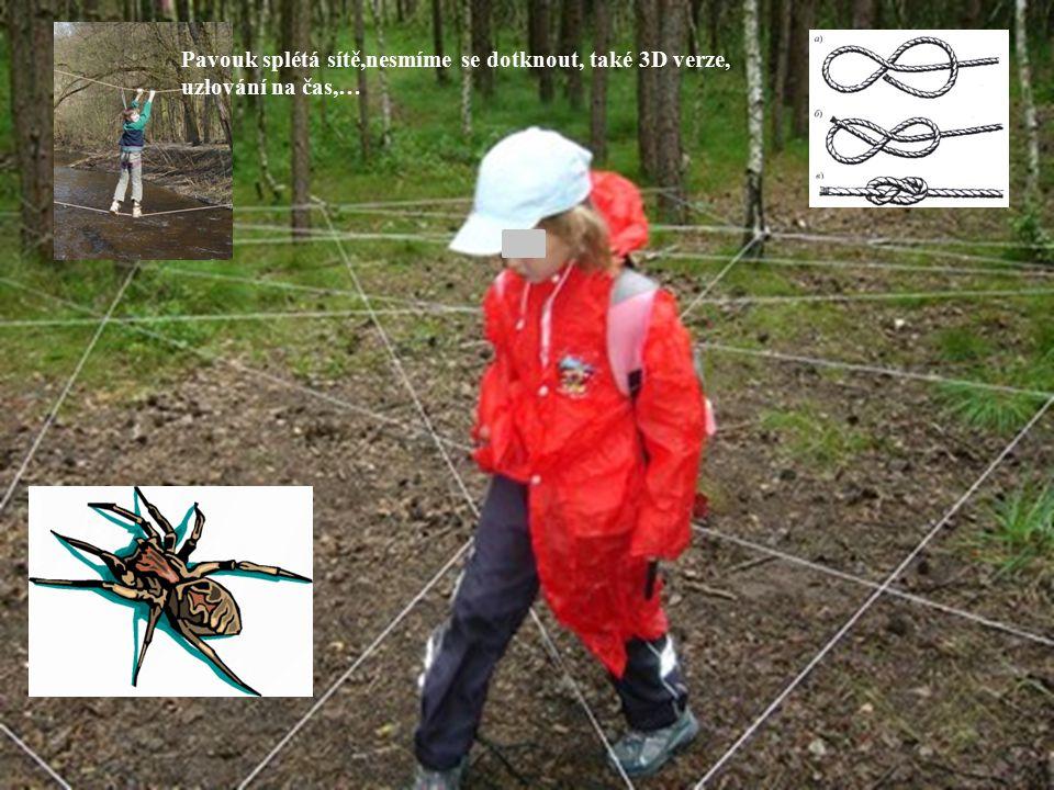 Pavouk splétá sítě,nesmíme se dotknout, také 3D verze, uzlování na čas,…