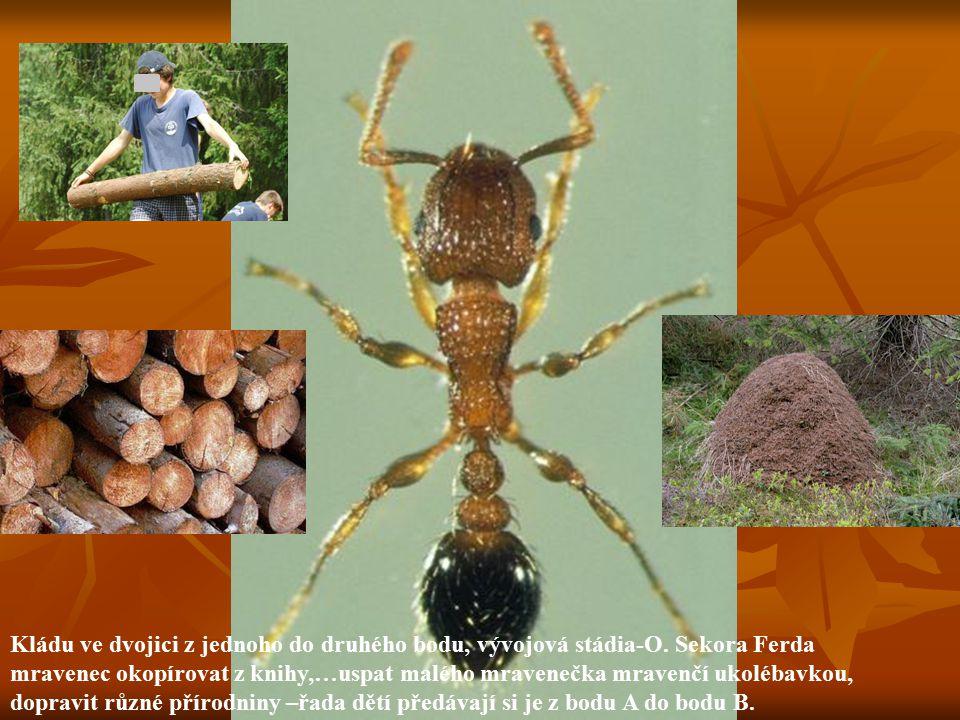 Kládu ve dvojici z jednoho do druhého bodu, vývojová stádia-O. Sekora Ferda mravenec okopírovat z knihy,…uspat malého mravenečka mravenčí ukolébavkou,