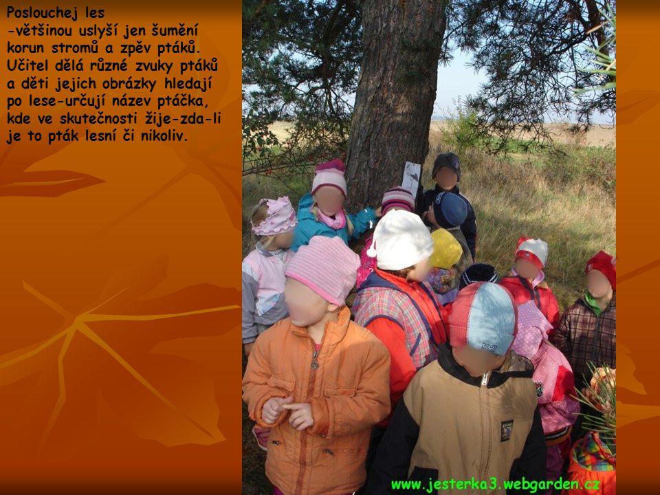 Poslouchej les -většinou uslyší jen šumění korun stromů a zpěv ptáků. Učitel dělá různé zvuky ptáků a děti jejich obrázky hledají po lese-určují název